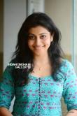Shruti Ramachandran Stills (6)