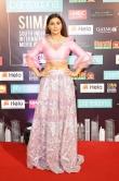 celebrities at SIIMA awards 2019 day 2 stills (58)
