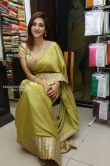 Sita Narayan in saree stills (7)