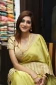 Sita Narayan in saree stills (8)
