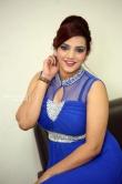 Actress SK Attiya Stills (26)