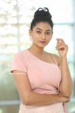 Spandana Palli at Entha Manchivaadavura Press Meet (29)