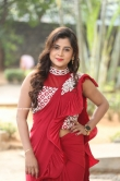Sri Pallavi at Ammadeevena Movie Press Meet(8)