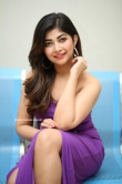 Srijitaa Ghosh latest photos 10.02 (16)