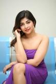 Srijitaa Ghosh latest photos 10.02 (17)