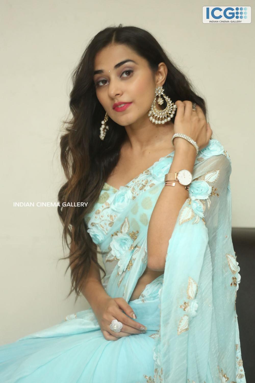 Stefy Patel at Ninnu Thalachi Movie Press Meet (2)