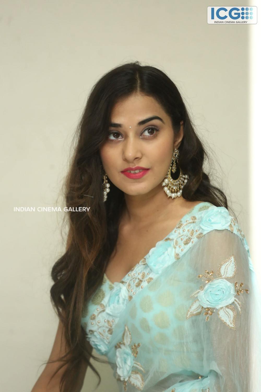 Stefy Patel at Ninnu Thalachi Movie Press Meet (4)