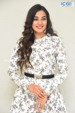 Stefy patel at Ninnu Thalachi movie press meet (1)