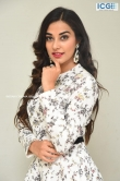 Stefy patel at Ninnu Thalachi movie press meet (12)
