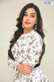 Stefy patel at Ninnu Thalachi movie press meet (14)