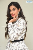 Stefy patel at Ninnu Thalachi movie press meet (15)