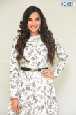 Stefy patel at Ninnu Thalachi movie press meet (3)
