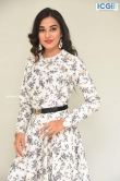 Stefy patel at Ninnu Thalachi movie press meet (4)