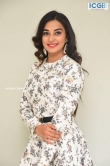 Stefy patel at Ninnu Thalachi movie press meet (5)