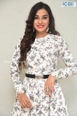 Stefy patel at Ninnu Thalachi movie press meet (9)