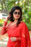 Tulika Singh stills (19)